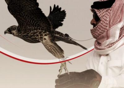 qatar filming services