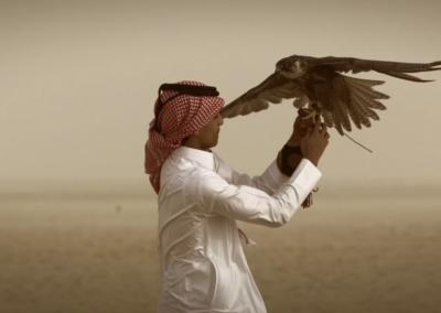 The Falconers_boy&falcon